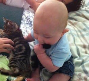Jack and kitten